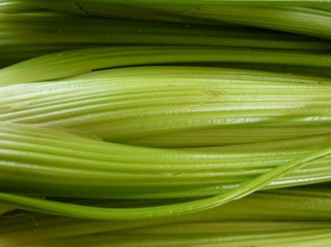 rapikaty-celer